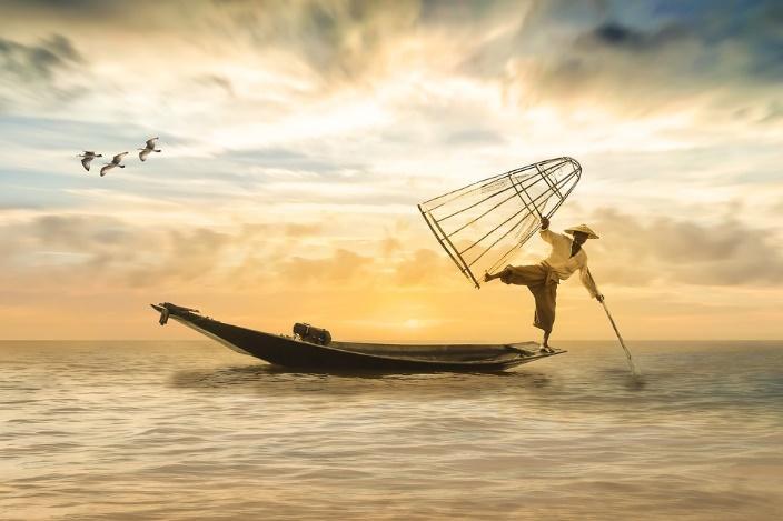 Mơ thấy bắt cá đánh con gì, là điềm báo gì?